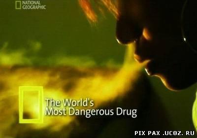 worlds most dangerous drugs
